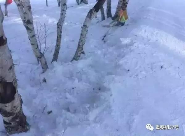 北大女生滑雪遇难 知情人:刹了两次没刹住后撞树