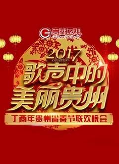 贵州卫视鸡年春晚2017