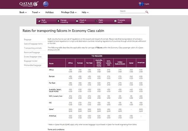在中东,猛禽可以乘坐航班,这是卡塔尔航空公司在其网站上提供的相关价格。
