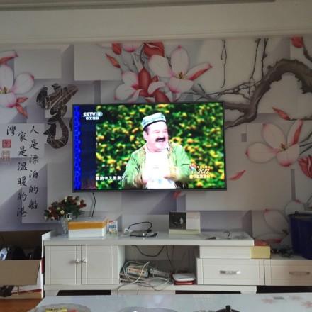 网友晒自家画风清奇的电视墙 没点审美力真欣赏不来