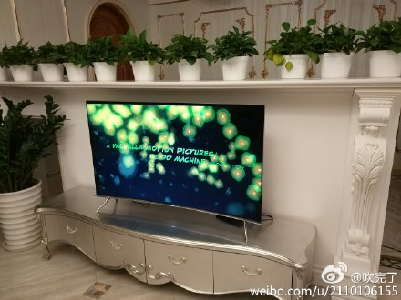 手工电视墙,这盆妖娆的绿萝任务也挺重的,要咬定墙壁不放松,另外福字贴那么高,支付宝扫福方便吗?
