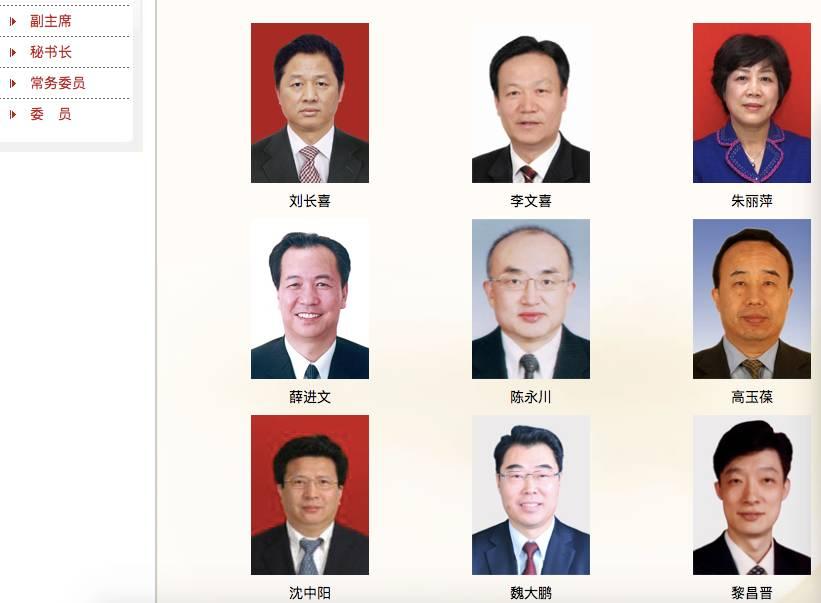 天津市政协官网截图