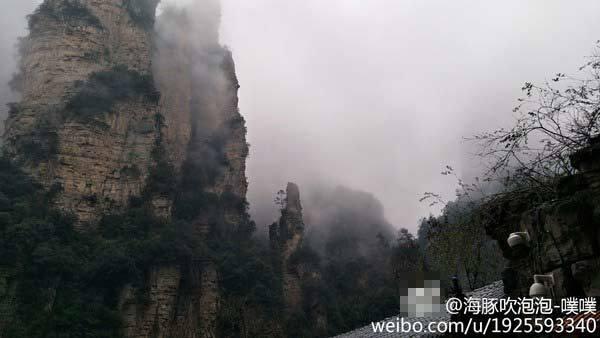 3日,湖南张家界森林公园大雾弥漫。