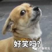 博主@回顾公用小马甲发了一个论题让各人晒冰箱,没想到...