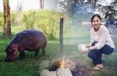 非洲露营与动物做邻居?