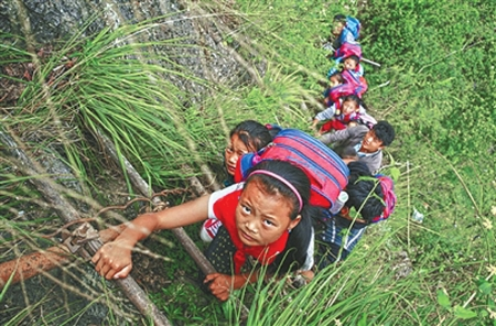 曾经,孩子们背着沉甸甸的书包,每天爬藤梯上下学。