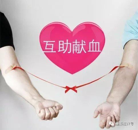 """2015年11月,""""血头""""杨某涉嫌不法安排卖血罪在海淀法院受审。 新京报记者 王巍 摄"""