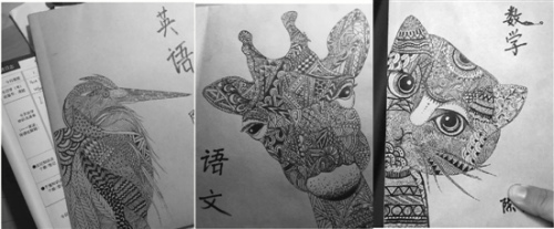 这三张动物头像的书皮出自杭州天长小学的一位妈妈之手,堪比插画。