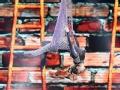 《花漾梦工厂第二季片花》抢先看 神技能!何雯娜上演网中逃脱 震惊众人