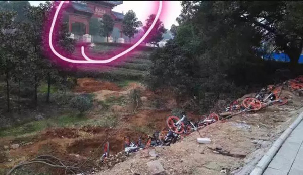 武汉东湖绿道整治将摩拜单车丢荒地遭质疑,安保队长被开除