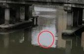 共享单车被扔小区河道