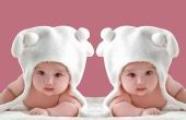 为何不能用这招怀双胞胎?