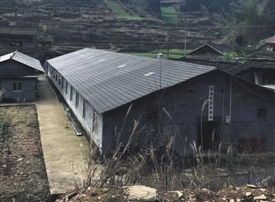 2月25日,湖南溆浦县彭洲村养殖户家废弃的猪场。B06-B07版摄影/新京报记者 张泉薇