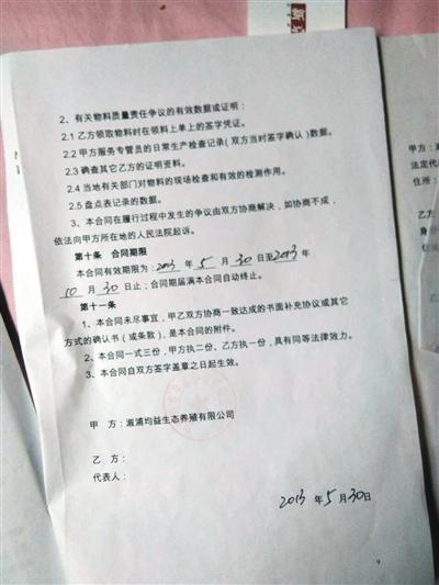 彭洲村养殖户向新京报记者出示的养殖合同(溆浦均益生态养殖有限公司为大康农业子公司)。