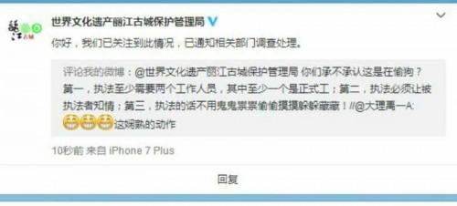 丽江一网友被偷狗交罚款?官方已介入调查
