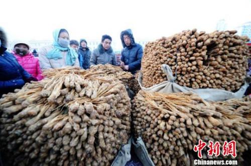资料图:甘肃岷县中国当归城内中药材交易场景。杨艳敏 摄