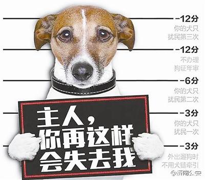 """3月1日,山东济南推出""""养犬计分制""""的消息一经发布,随即引发热议。根据政策要求,济南市民在养狗过程中,有扰民等违规行为,犬主的养犬登记证就会被扣分,总分12分,全部扣完,犬主需要""""补考""""文明养犬相关法规,合格后才能取回犬只和养犬登记证。"""