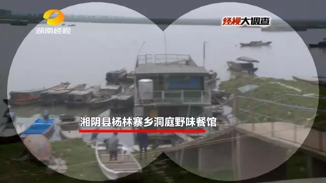 """名为""""洞庭野味餐馆""""的店铺就在湘阴横岭湖区的港口。看上去很普通的餐馆却隐藏着一个大秘密。"""