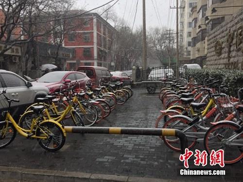 风雪中的共享单车。中新网 吴涛 摄