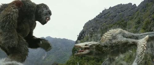 金刚与骷髅爬虫对峙