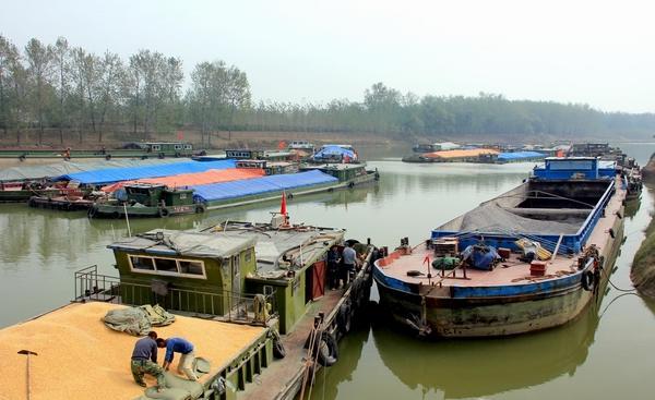 河南周口港,一片繁忙的景象。视觉中国 资料图