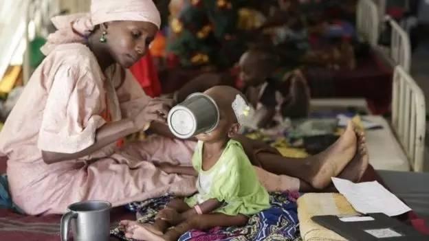 在尼日利亚东北部的伊斯兰极端组织的活动使该地区处于饥荒边缘。
