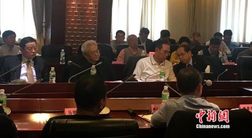 蔡振华总结足球改革两年来的成果。中新网记者王牧青摄