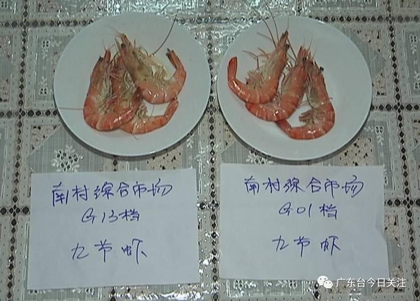 记者随后将分别从南村综合市场两间档口购买的冷冻九节虾煮熟,剥开后发现,两间档口冷冻虾的虾头中,均存在凝固的�ㄠ�状物质,颜色呈透明的淡黄色,如拇指般大小,而其边缘则呈现出白色。有懂行人士说,虾头内存在这种物质实在太跷蹊。