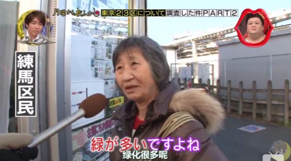 """由于实在什么都没有,最终只好得到""""练马区是绿化很好的东京农村""""这一结论。"""