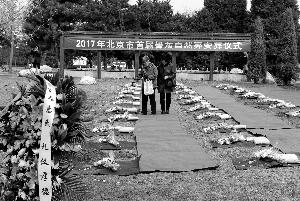 北京首次实施免费自然葬:罐体可降解不保留骨灰