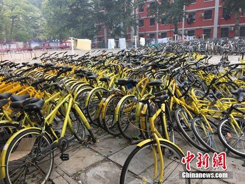 资料图。北京某所高校内的共享单车数量惊人。中新网 吴涛 摄