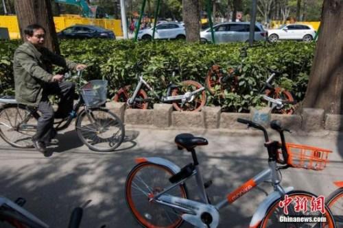 """南京一慢车道遭共享单车""""占领""""。中新社记者 泱波 摄"""