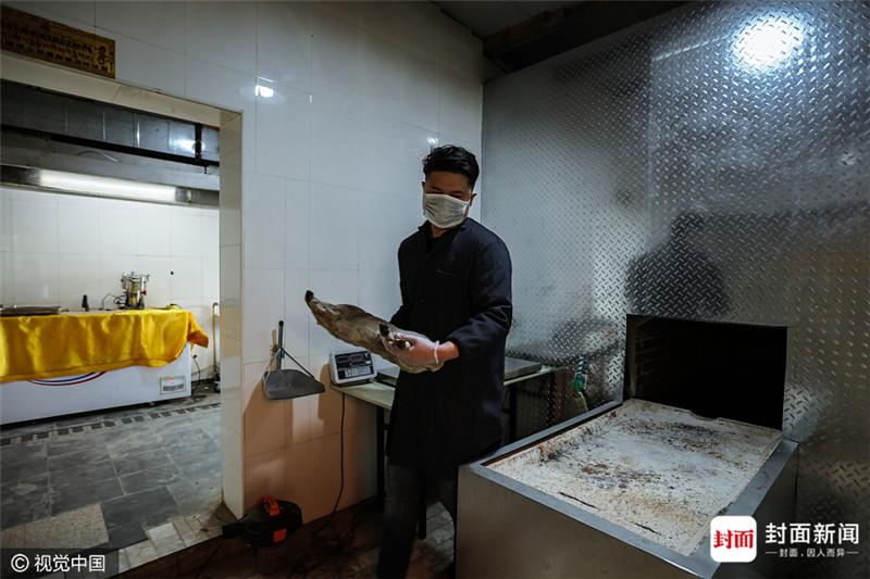 北京宠物殡葬业生意猛增有人弃高薪加入