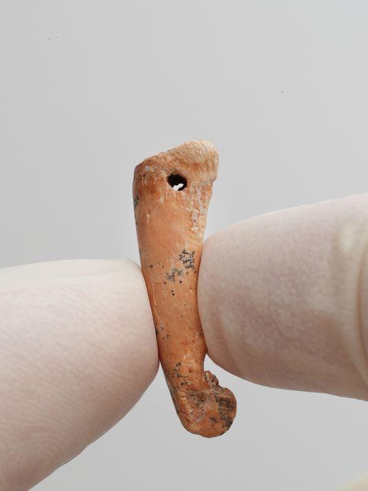论文说,这些早期的艺术品与珠宝进一步揭示了冰川期人类的文化与符号体系。研究者说,这些人造物品还意味着,现代人类在从亚洲向澳大利亚迁徙的过程中遇到新的动物物种,精神信念恐怕发生了变化。