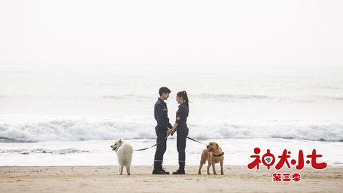 《神犬小七3》杀青 剧情全面升级引领行业风向