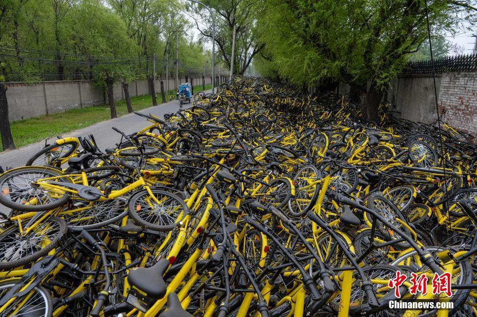 """4月7日,北京朝阳区一ofo共享单车维修点""""车满为患"""",长约上百米的道路一旁堆满了数千辆等待维修的故障共享单车,有些地方的车堆超过2米高。 中新社记者 崔楠 摄"""