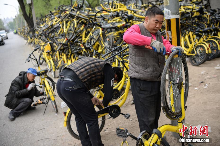 该处工作人员坦言,依现有的送修数量及修理速度,根本无法在短时间内将该处所有故障单车修好。图为现场工作人员正在修理仍可修复的单车。 中新社记者 崔楠 摄