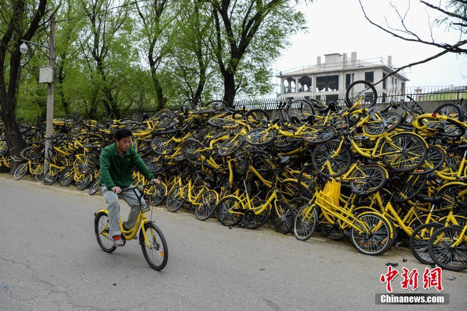 民众骑共享单车经过该维修点。 中新社记者 崔楠 摄