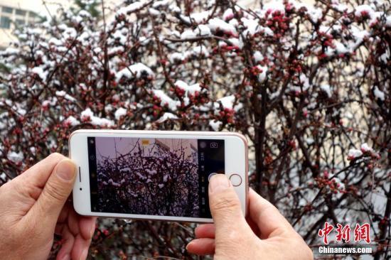 青海部分地区出现罕见暴雪天气部分班车停运
