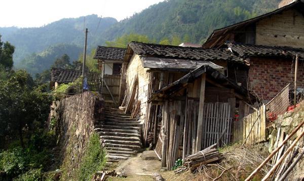 桦岭村整村迁建工程补助直到工程完工也没有发下来。 福鼎大虫 图