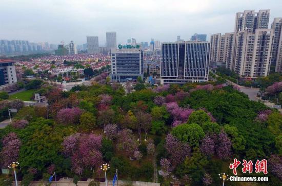 专家认为目前中国的城市数量太少了(图)