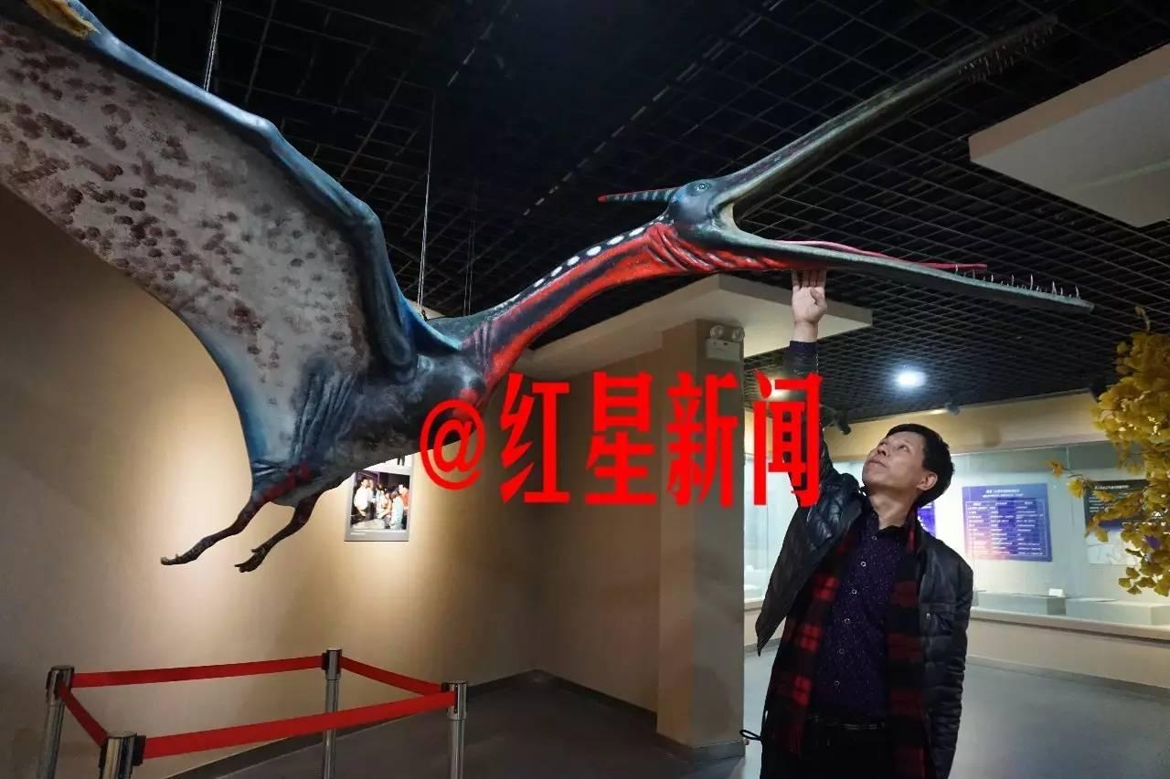 刘存余办有中国北票翼龙化石博物馆。他没想到,以妻子朱海芬的名义捐赠给河南省地质博物馆的朱氏莫干翼龙的化石,令妻子成为被告。