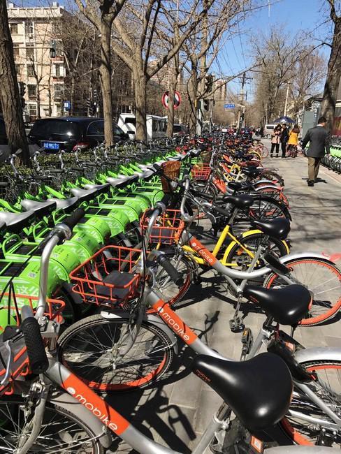 五颜六色的共享单车疯长后 这几座城市出招了