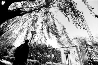 """从前天凌晨开始,受外来沙尘影响,本市出现了一次空气严重污染过程。在此期间,有网友反映,在北京奥体中心附近,一辆""""雾炮车""""对着监测站点一直喷,""""这是数据造假么?"""""""