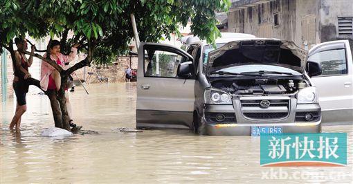 一场暴雨冲刷,花都多条乡村出现不同程度的水浸。