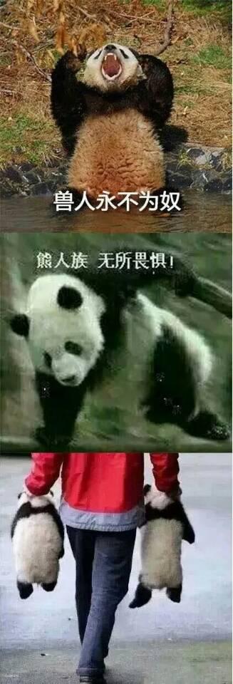 话说,大家发现了没,英国的《每日邮报》几乎天天靠中国的熊猫吸粉啊!