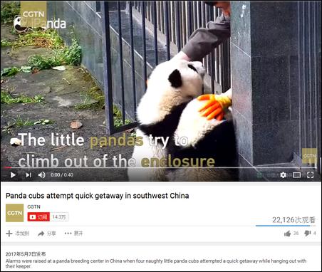 点开CGTN的YouTube首页,你就可以发现,这货不愧是央视旗下的,和CCTV的Facebook一个德行,见天儿的靠着滚滚吸粉,还专门弄了一个熊猫频道。