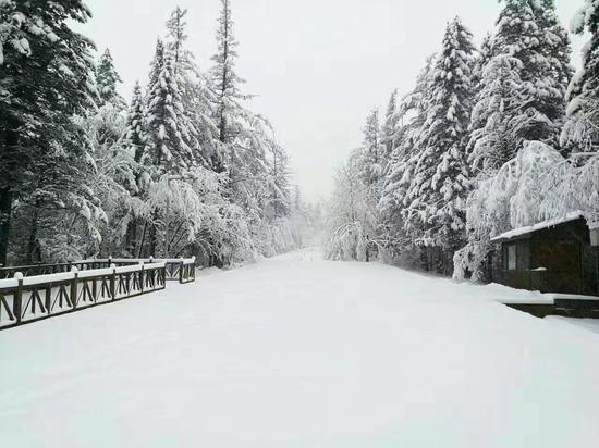 吉林白山部分山区飘雪 长白山下冬春并存(图)