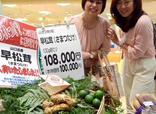 人民网东京5月16日电据《朝日新闻》网站报道,大阪市阪神百货店15日摆出了四颗产自山口县的松茸,重量共计107克。原本为秋季食材的松茸在夏季登场,令很多顾客驻足关注。