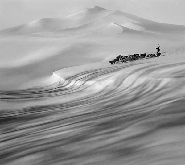 张洪林-穿越冰川